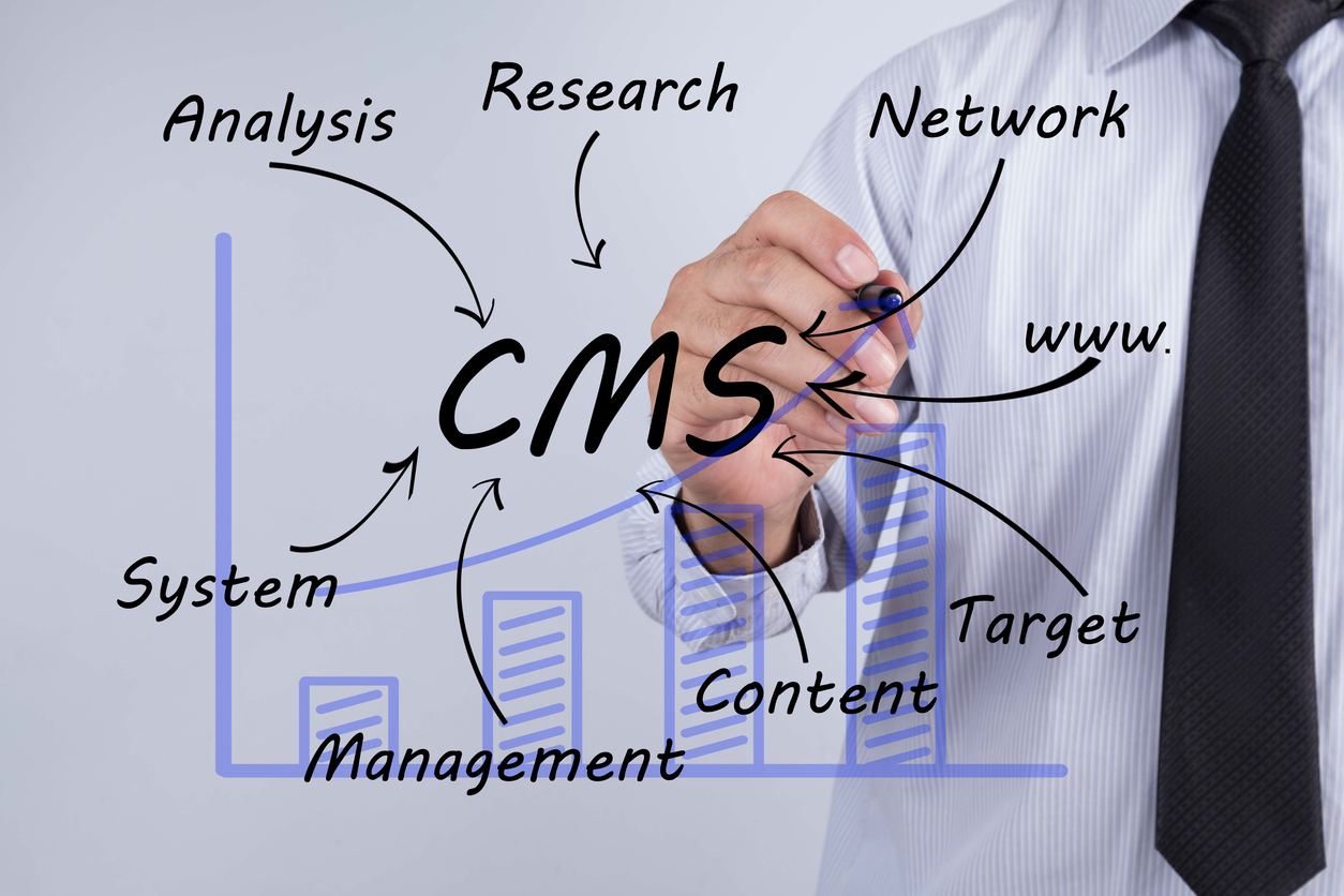 Content Management System (CMS) as a tool for publishing targeted content